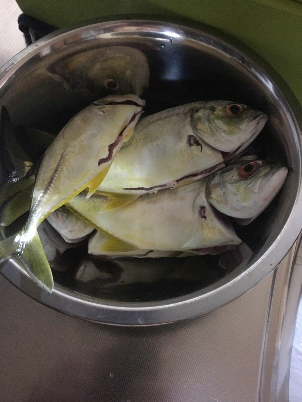 たっくんさんの投稿画像,写っている魚はギンガメアジ
