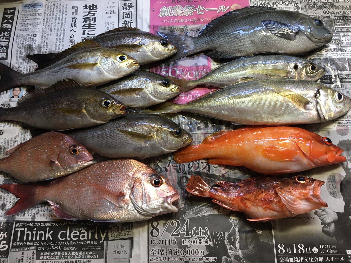 イナバーさんの投稿画像,写っている魚はイサキ,アジ,マダイ,アカハタ,カサゴ