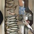 ONZさんのサヨリの釣果写真