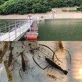 たくさんの山梨県での釣果写真