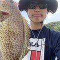 しもしさんの静岡県沼津市でのオオモンハタの釣果写真