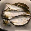仁 介護士時々釣り師さんの岡山県岡山市での釣果写真