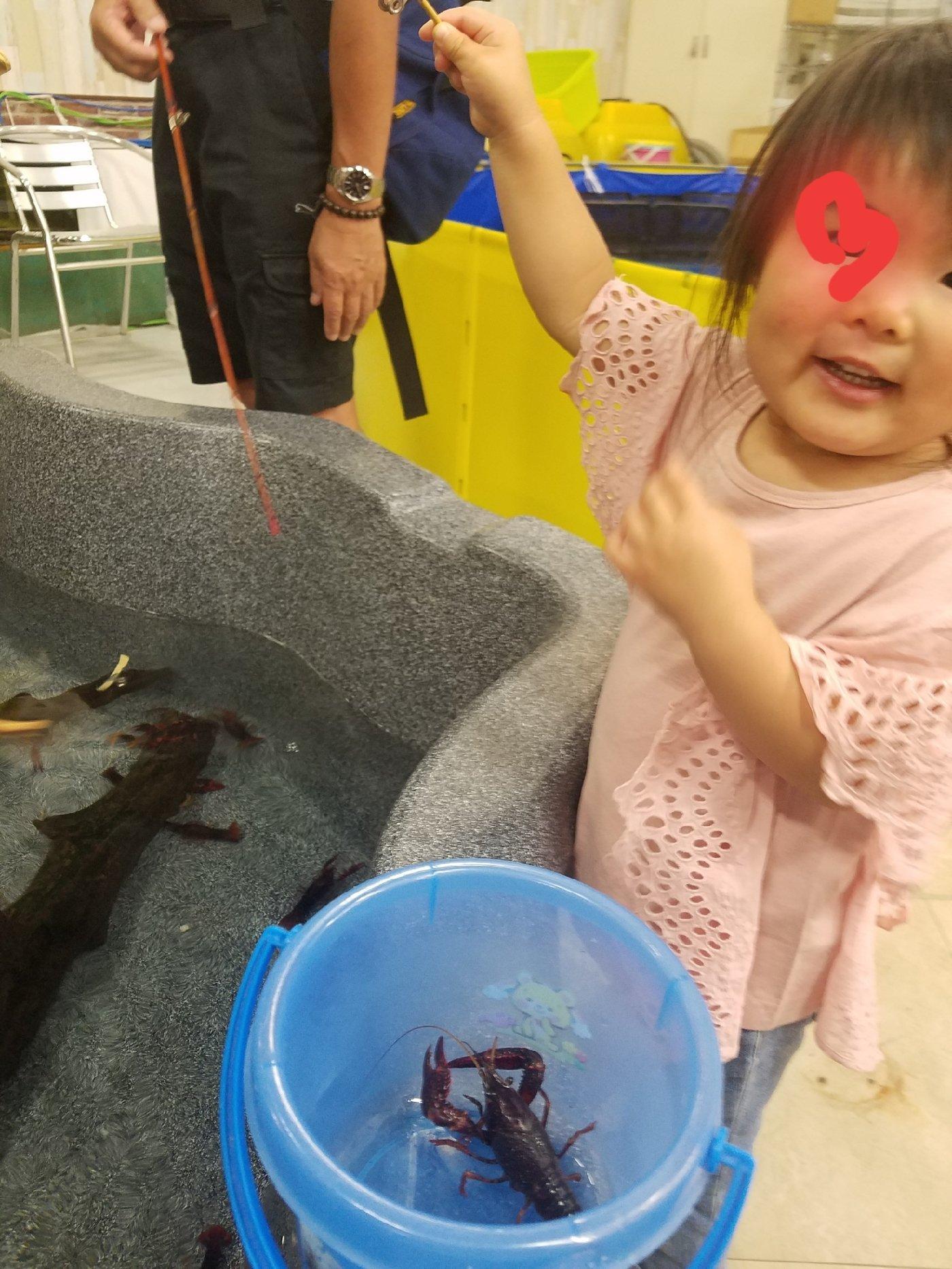 ちび丸さんの投稿画像,写っている魚は
