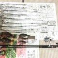 ゆうゆうさんの大阪府河内長野市での釣果写真