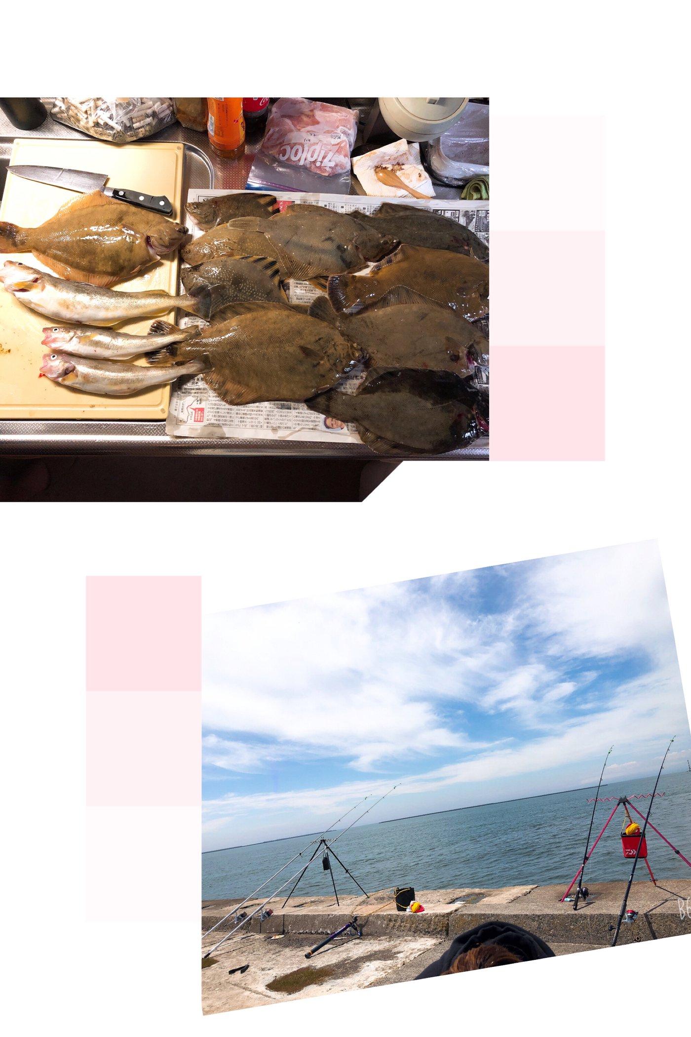 あーちゃんさんの投稿画像,写っている魚はカレイ