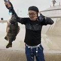 アブさんの東京都江東区での釣果写真