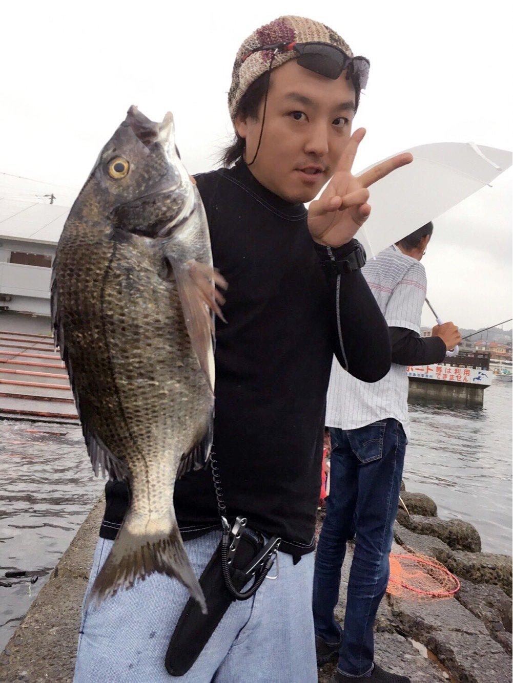 ニッキーさんの投稿画像,写っている魚はクロダイ