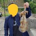 またろうさんの大分県臼杵市での釣果写真