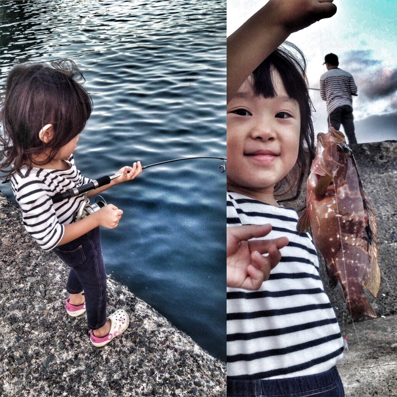 げんきさんの投稿画像,写っている魚はキジハタ