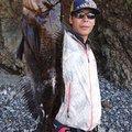 tatsukiさんの宮城県牡鹿郡でのアイナメの釣果写真