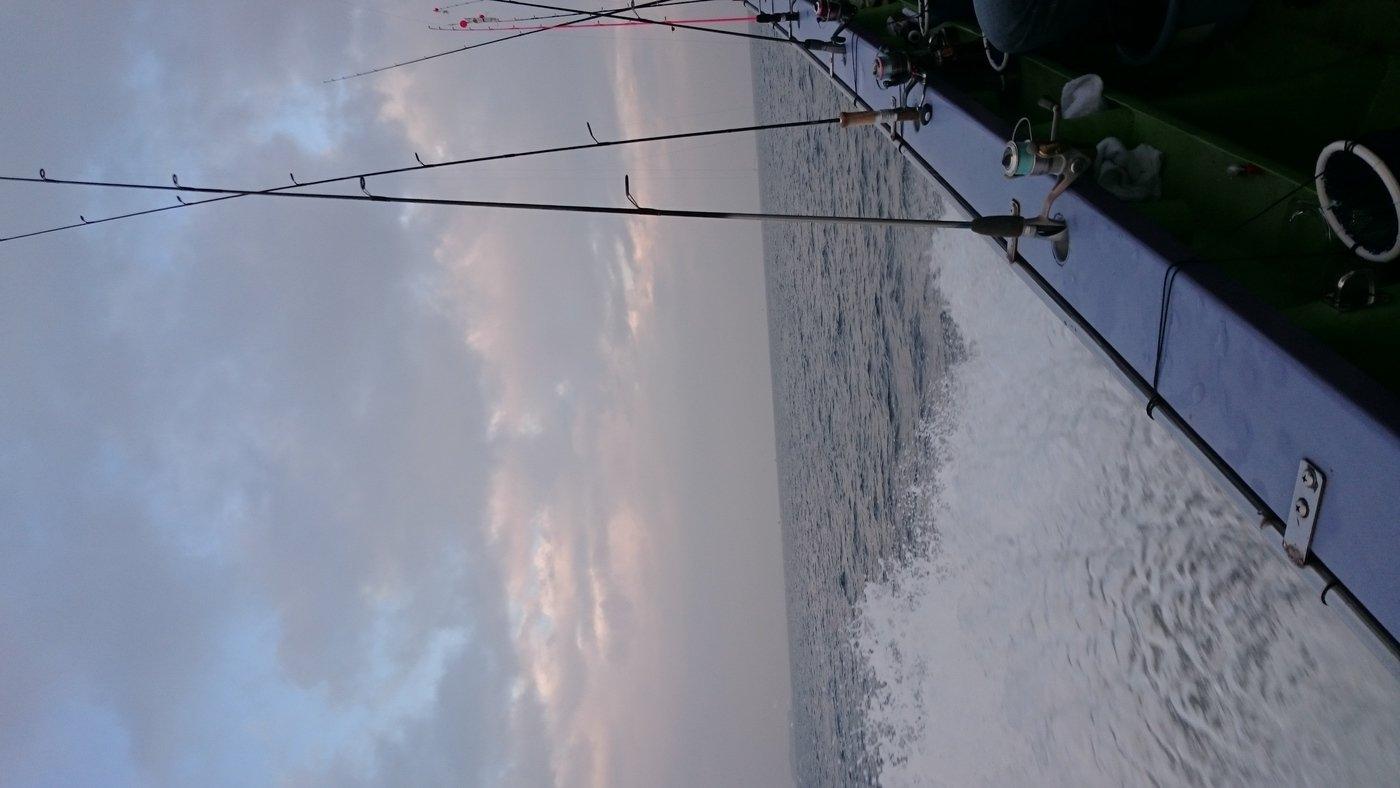 かおり@釣り初心者🔰さんの投稿画像,写っている魚はイイダコ