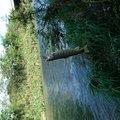 かおりさんの長野県北佐久郡での釣果写真