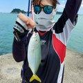 饂飩太郎さんのワラサの釣果写真