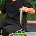 Advent Kenichiさんの山梨県での釣果写真