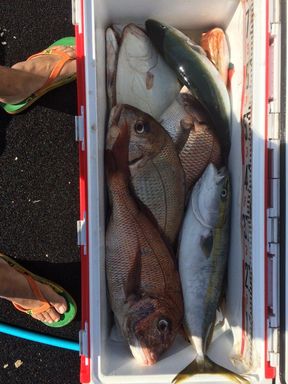 タカシさんの投稿画像,写っている魚はマダイ