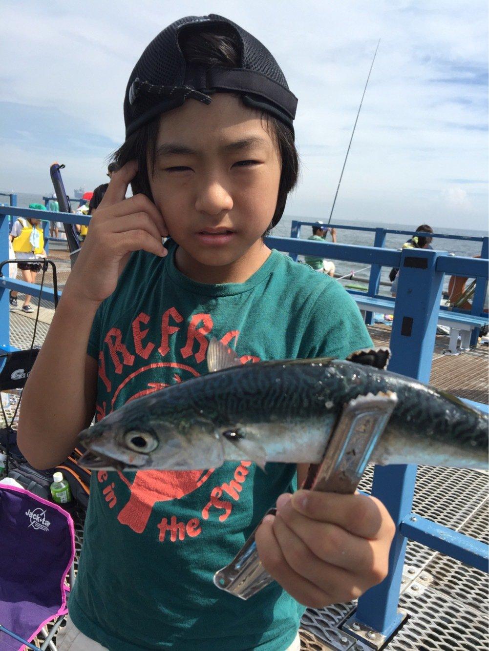はにおさんの投稿画像,写っている魚はマサバ