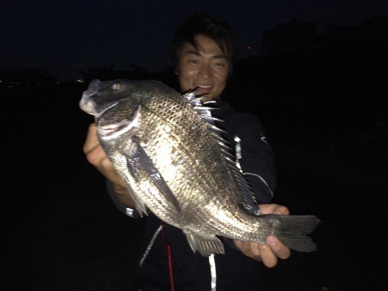 ニシムラダイキさんの投稿画像,写っている魚はクロダイ