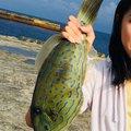 じゅんさんの東京都青ヶ島村での釣果写真