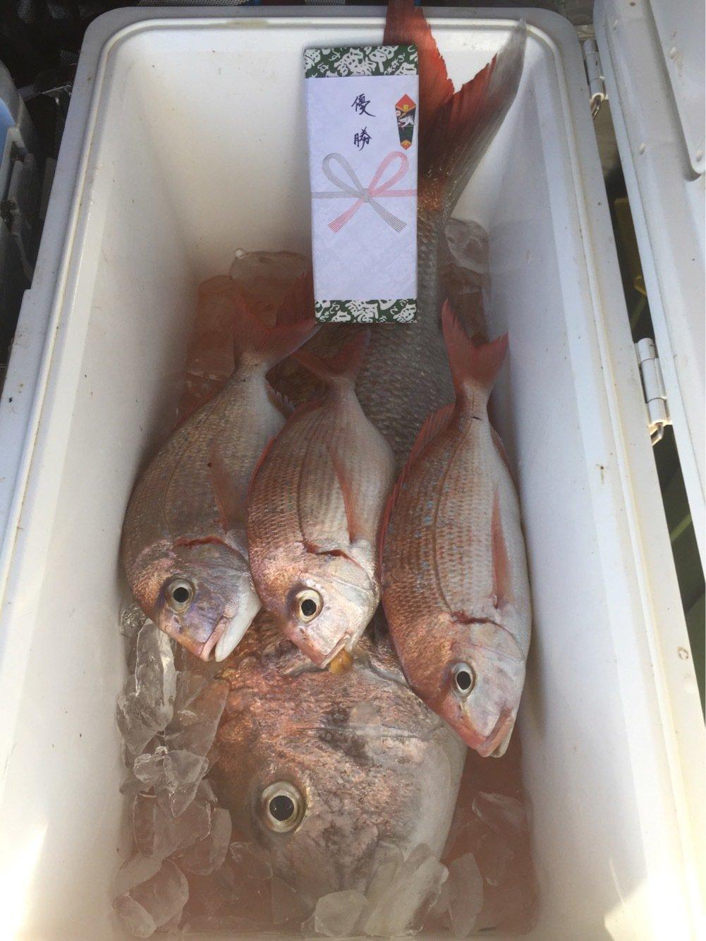 がさちんさんの投稿画像,写っている魚は