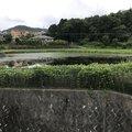 ぺこさんの兵庫県川西市での釣果写真