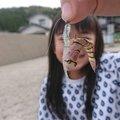 はのんさんの石川県七尾市での釣果写真