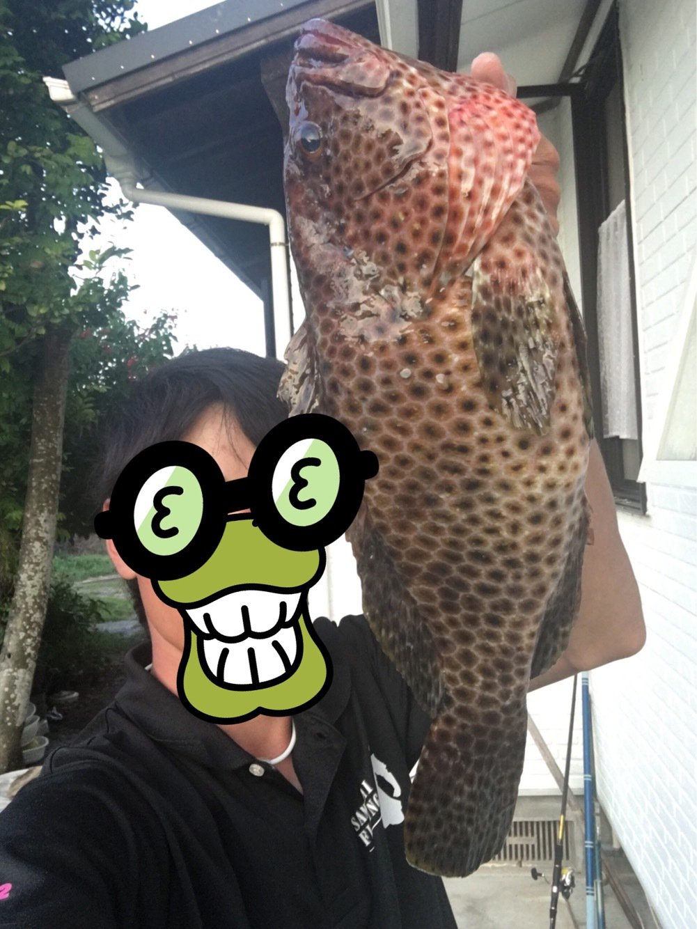 大五郎さんの投稿画像,写っている魚はシロブチハタ