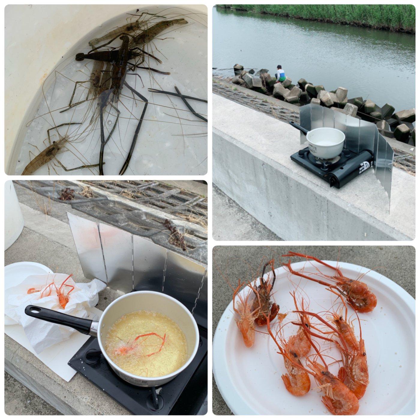 スイミー☆彡さんの投稿画像,写っている魚はテナガエビ