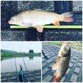 青木浩幸さんの栃木県での釣果写真