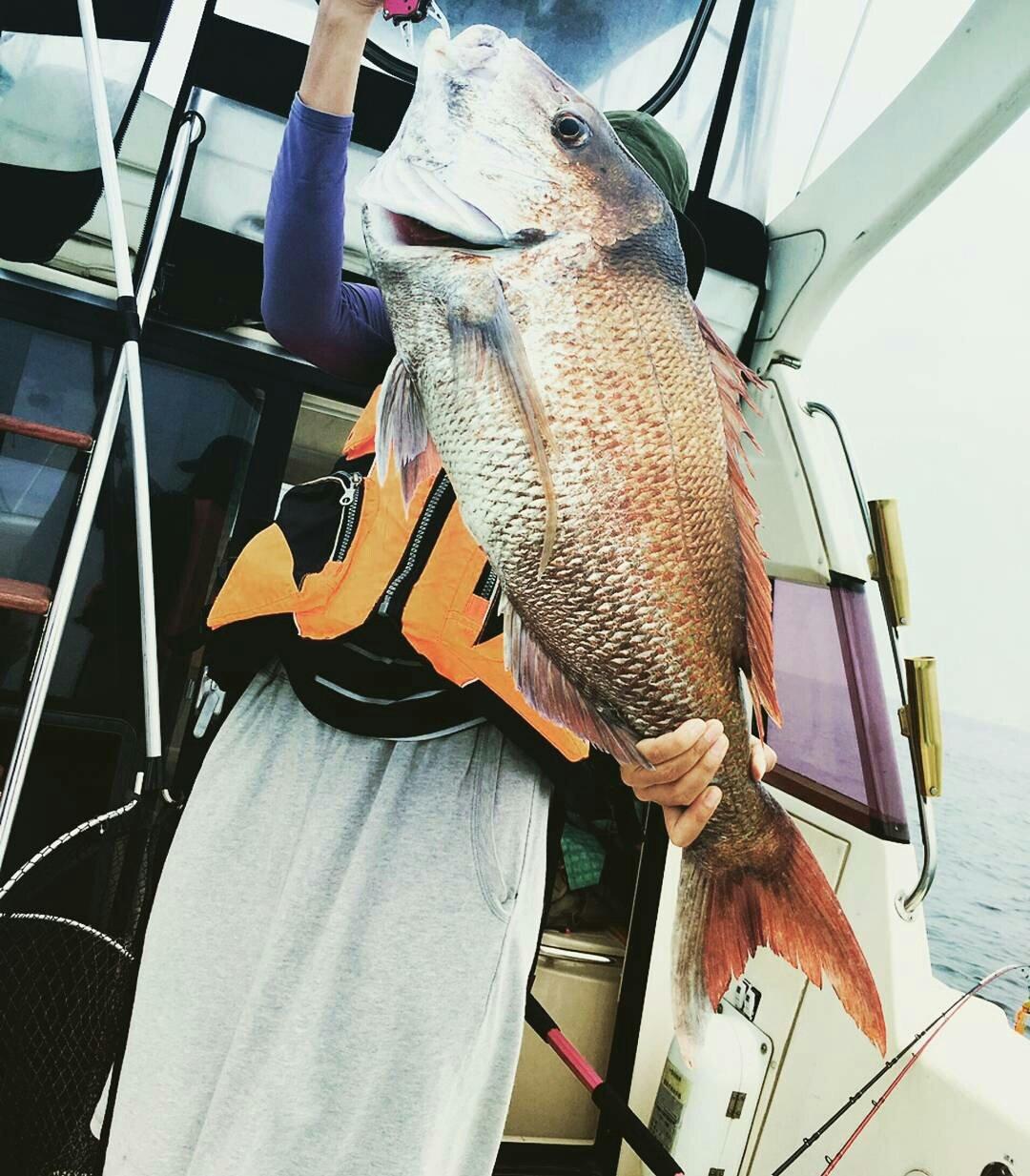 チープさんの投稿画像,写っている魚はマダイ