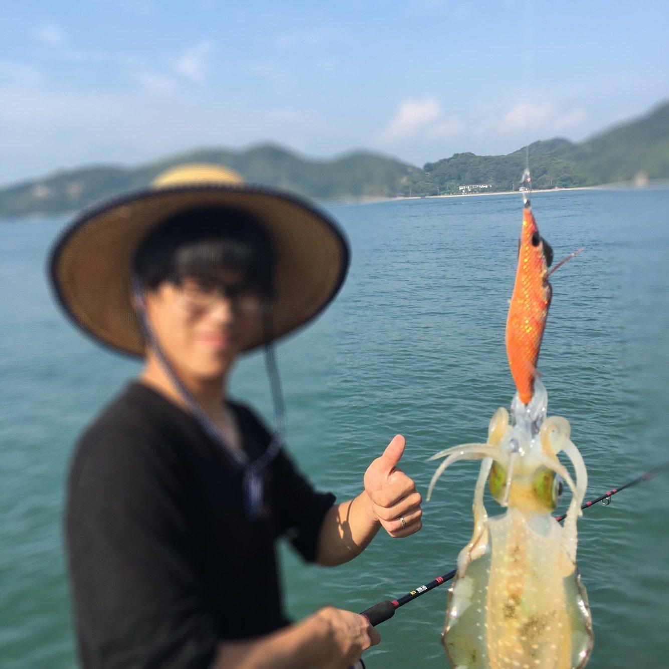 とくさんの投稿画像,写っている魚はアオリイカ