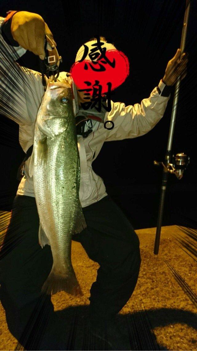 ★瀬極会☆底モン野郎★さんの投稿画像,写っている魚はスズキ