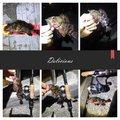 えびちゃん❗️さんの兵庫県でのカサゴの釣果写真