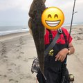 OD274さんの宮城県岩沼市での釣果写真