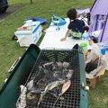 小鉄のパパさんの福岡県行橋市での釣果写真