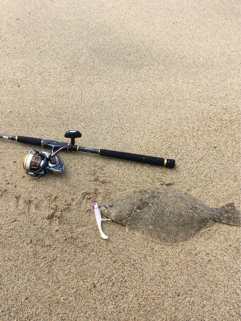 ハルさんの投稿画像,写っている魚はヒラメ