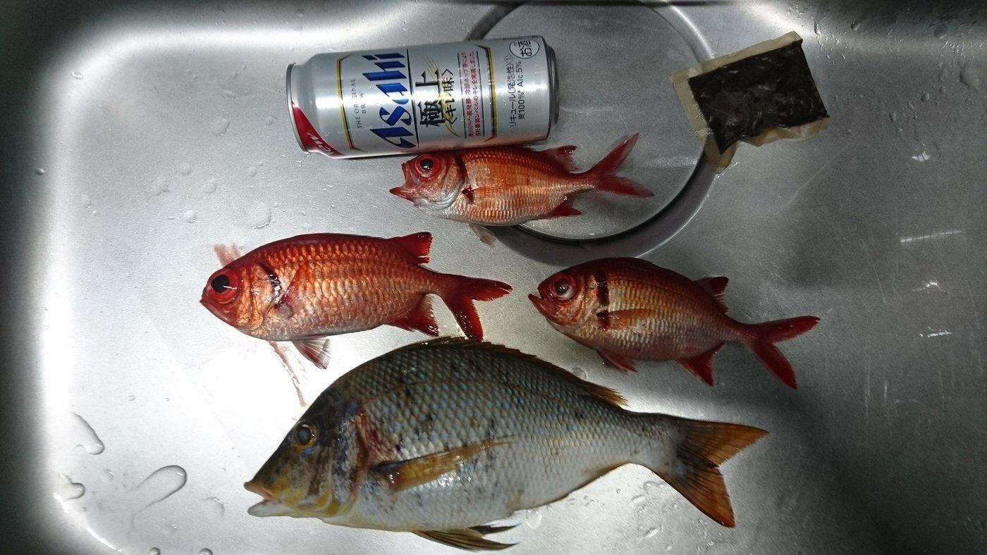 ソラさんの投稿画像,写っている魚はハマフエフキダイ