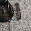 ヤマテツさんの宮城県石巻市での釣果写真