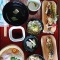 藤井悠大さんの熊本県での釣果写真
