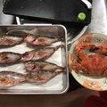 スズロウさんの神奈川県横須賀市でのメバルの釣果写真