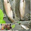 かなぼうさんの北海道有珠郡での釣果写真