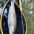 シーアツさんの北海道千歳市での釣果写真