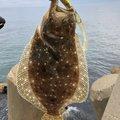 ゆうじさんの石川県かほく市でのヒラメの釣果写真