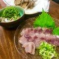 mazumeさんのタチウオの釣果写真