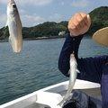 Ryo tさんのキュウセンの釣果写真