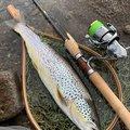こいさんさんの北海道千歳市での釣果写真