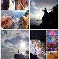 KRO さんの静岡県沼津市でのカサゴの釣果写真