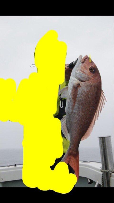 K さんの投稿画像,写っている魚はマダイ