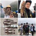 FREESTYLE(おーみ)さんの宮城県石巻市でのアイナメの釣果写真