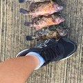 釣りがエナジーさんの長崎県南松浦郡での釣果写真