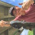 ホムラさんの奈良県大和郡山市でのナマズの釣果写真